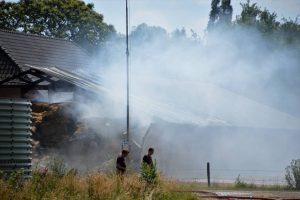 Aantal kalveren omgekomen bij brand in Terborg